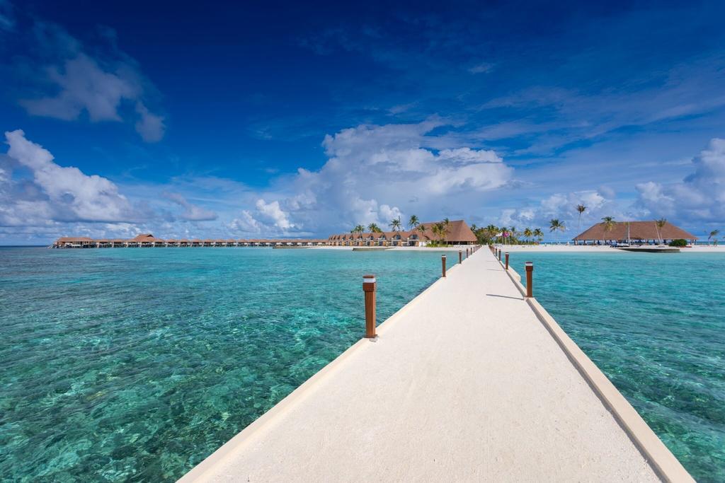 Fiber Thatch Cinnamon Velifushi Maldives 7 - Copy